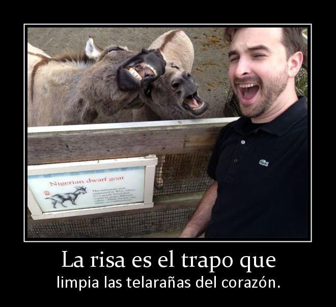 140192_la-risa-es-el-trapo-que